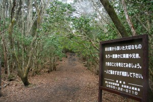 suicide forest sign